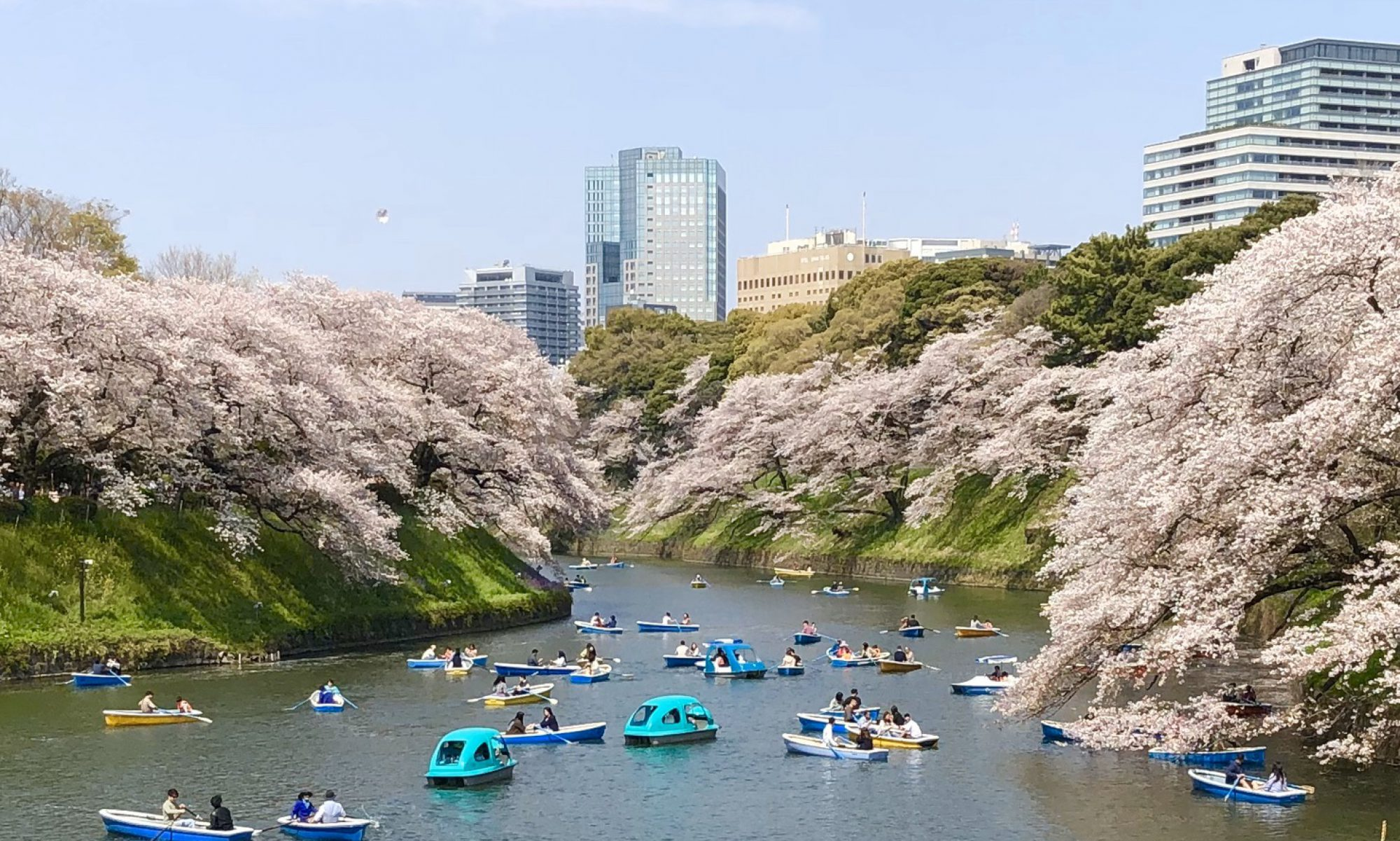 江戸東京ガイドの会ブログ